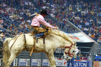 Rodeo Houston 2007